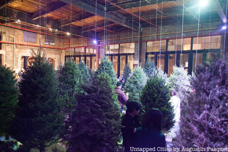 Suspended Forest of Discarded NYC Christmas Trees Will Be On Display in Queens
