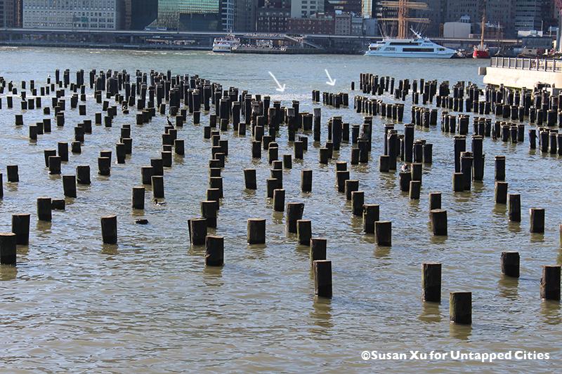 secrets-of-brooklyn-bridge-park-dumbo-nyc-untapped-cities-susanxu12
