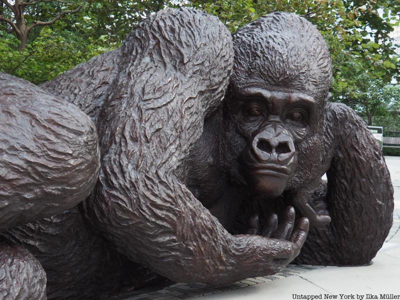 King Nyani Giant Mountain Gorilla closeup
