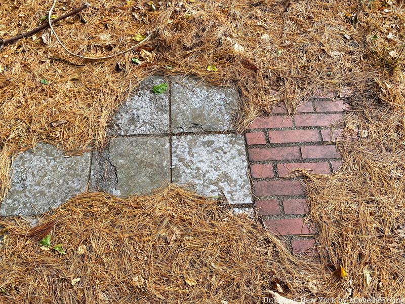 tiles under the pine needles