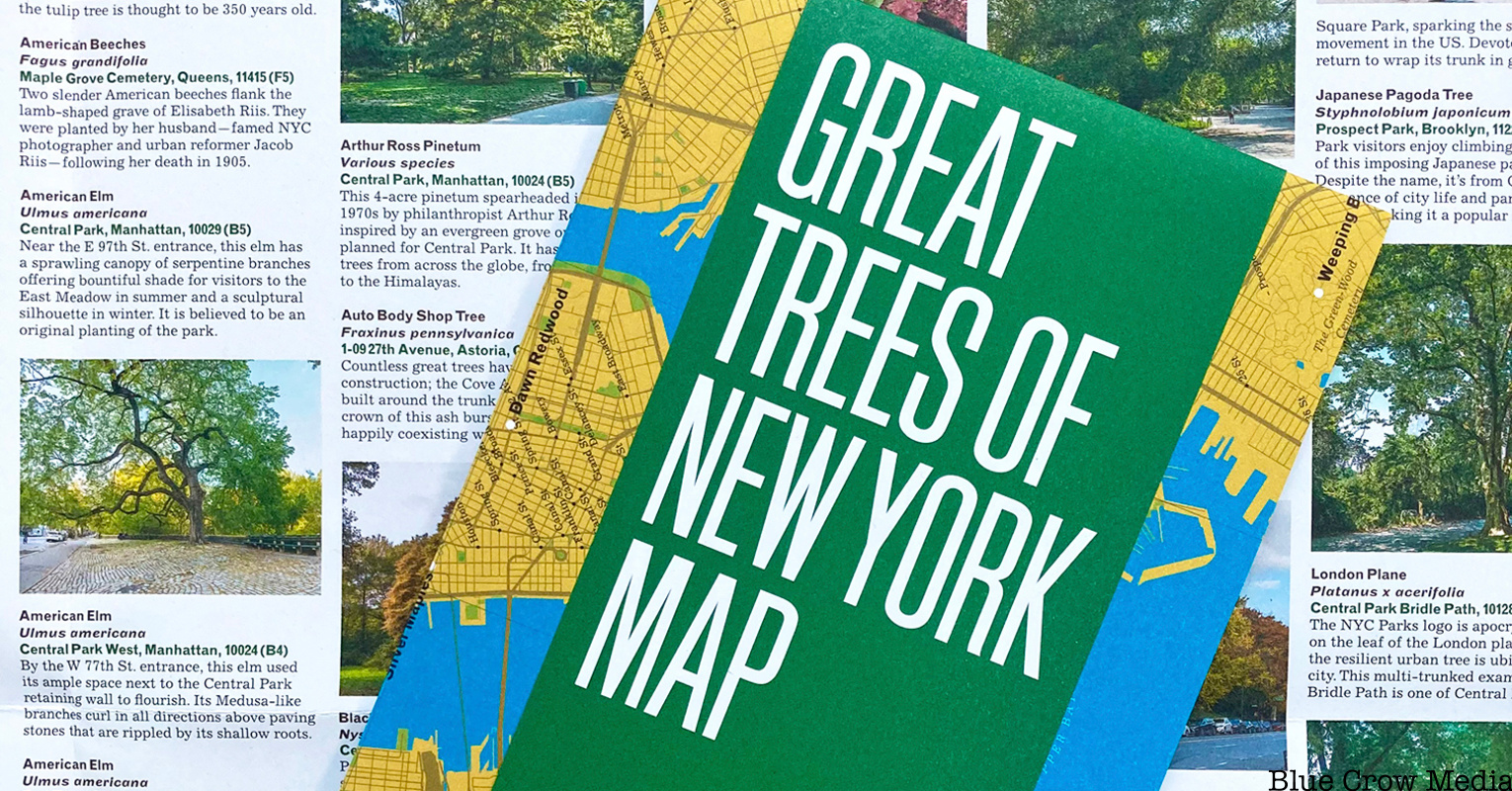 The Great Trees of New York Map